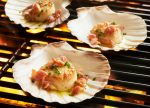 King Scallop Grilling Shells to Serve Your Meal with Seaside Touch