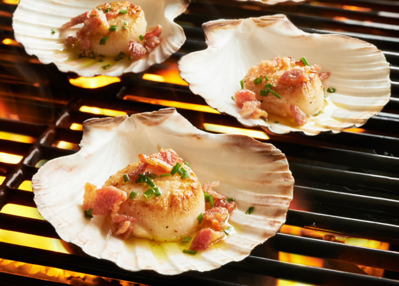 King Scallop Grilling Shells - Set of 4